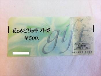 花とみどりのギフト券 500円×20枚 10,000円分