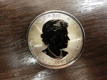Pt999.5 コイン 1オンス